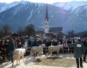 40 Jahre Schafzuchtverein Untermieming