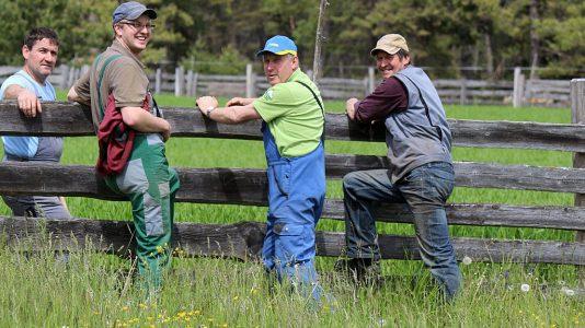 Die Obermieminger Bauern reparieren die Zäune am Kälberriegl, dem Vorberg der Feldernalm. Foto: Knut Kuckel
